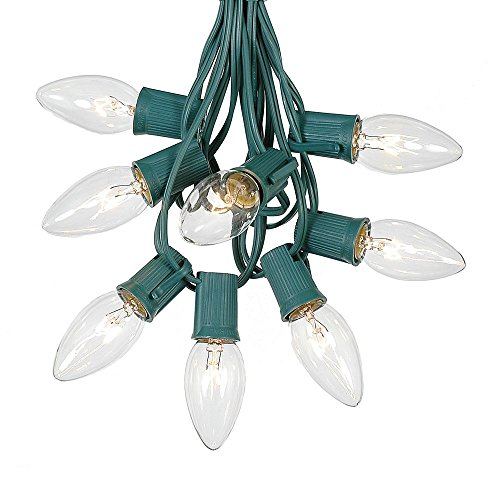 C9 Clear Christmas String Light Set - Outdoor Christmas Light String - Hanging Christmas Lights - Roofline Light String - Outdoor Patio String Lights - Green Wire - 25 Foot