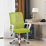 ADFBL Bürostuhl, Ergonomischer Stuhl, höhenverstellbarer Drehstuhl mit Wippfunktion Armlehne, Computer Stuhl, Schreibstuhl für Büro & Home-Office, in Grün