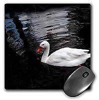 3drose LLC 8x 8x 0.25インチホワイトDuckマウスパッド( MP _ 1015_ 1)