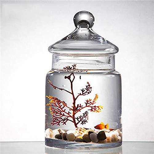 LNTE Aquarium,Glas Mit Deckel Wohnzimmer Kleines Faules Tischaquarium