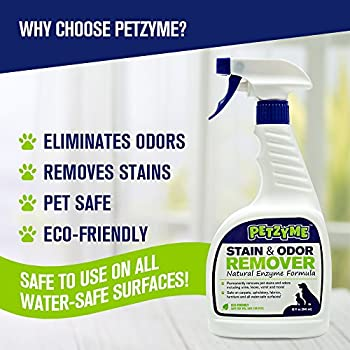 Petzyme Pet Stain Remover & Odor Eliminator, Enzyme Cleaner for Dogs, Cats Urine, Feces and More, 32 Fl Oz Spray by Petzyme