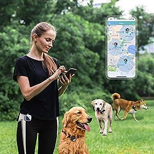 immagine di PETFON - Localizzatore GPS per animali domestici da 1 a 3 cani, nessun costo mensile, dispositivo di monitoraggio in tempo reale, monitor attività