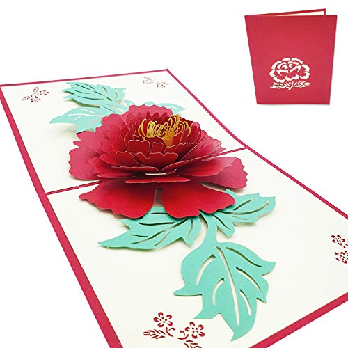 Tarjeta de felicitación 3D de amor - Bonita Rosa Roja con hojas - Postal 3D de Amor para San Valentín, aniversario, pareja, novio, novia, padre, madre, hijo, hija