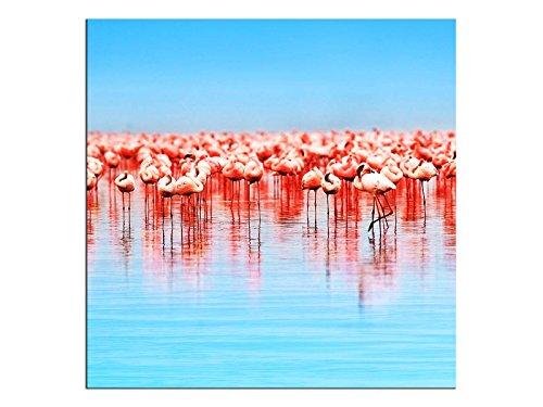 kunst-discounter A06145 Flamingo - Quadro da Parete su Tela, Quadrato su Telaio, Colore: Nero
