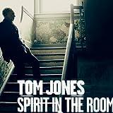 Spirit in the Room [Importado]