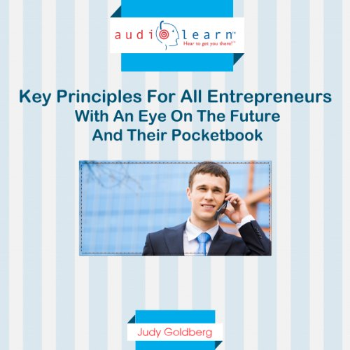 Key Principles for All Entrepreneurs with an Eye on the Future and Their Pocketbook cover art