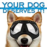 Petriz Dog Goggles - Large Breed UV Protection Waterproof Snow Proof Windproof Dustproof Eye Protection Sunglasses for Dogs Large Dog Glasses