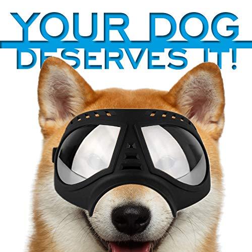 Petriz Dog Goggles -Large Breed UV Protection Waterproof Snow Proof Windproof Dustproof Eye Protection Sunglasses for Dogs Large Dog Glasses