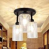 Depuley Lámpara LED de techo de 3 focos, de cristal, moderna, vintage, diseño retro, casquillo E27, perfecta para salón (sin bombilla), color negro