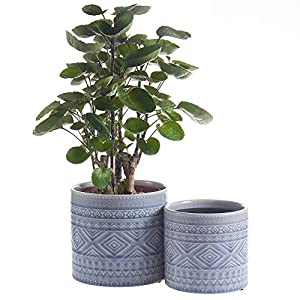 Voeveca Ceramic Flower Pot Garden Planters 4.5″ and 5.5″ Set of 2 Indoor Outdoor, Modern Nordic Style Plant Containers (Blue)