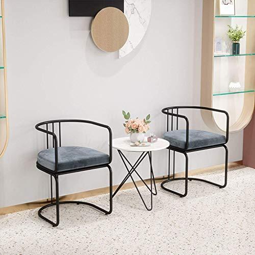 Combinación de silla de comedor de terciopelo nórdico - Conjunto de 2 sillones del respaldo del arte de hierro - para sala de estar, patio, terraza, oficina, cocina, descanso | Código de productos: LJ