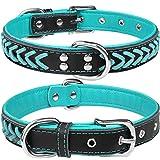 TagME Collar de Cuero para Perro, Collares de Cuero Ajustables y Duraderos con Anillo en D para Perros Grandes, Azul Verde