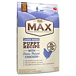 Nutro Max Large Breed Natural Puppy Food for Labs