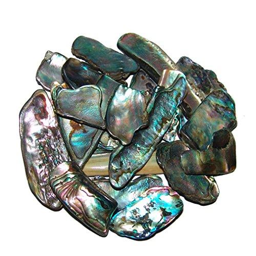 Janni-Shop-Deko & Schönes Paua Shell Muschel 50 Gramm = ca 70-100 kleine Stücke ca. 3-15 mm Seeopal mit herrlichem blauem Farbspiel