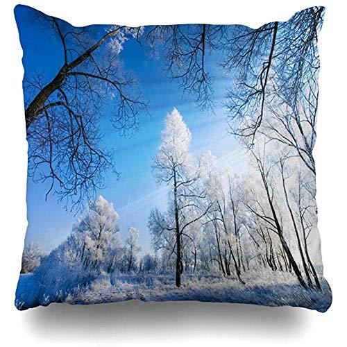 Dekokissenbezug 16x16 (40 x 40 cm) Field Blue Trees White Frost am Morgen Naturschutzgebiete Parks Blizzard Branch Weihnachten Clear Climate Frosty Pillowcase