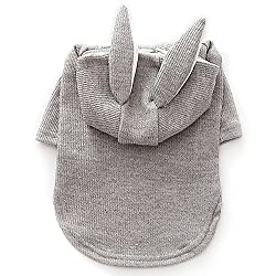 Easter Outfits For Dogs - Grey bunny hoodie.