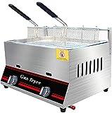 Freidora de 12 l, gas comercial, ajuste manual de temperatura, acero inoxidable, infrarrojos, ahorro de energía, con cesta extraíble, freidora de chips