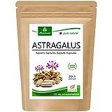 Cápsulas de Astrágalo (112 mg de polisacáridos y 0,8 mg de glucósidos) Tragant Tragacantha...