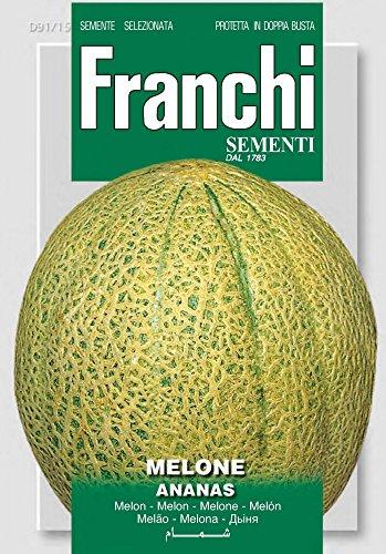 Franchi Sementi DBO91-15 Melone Ananas (Melonensamen)
