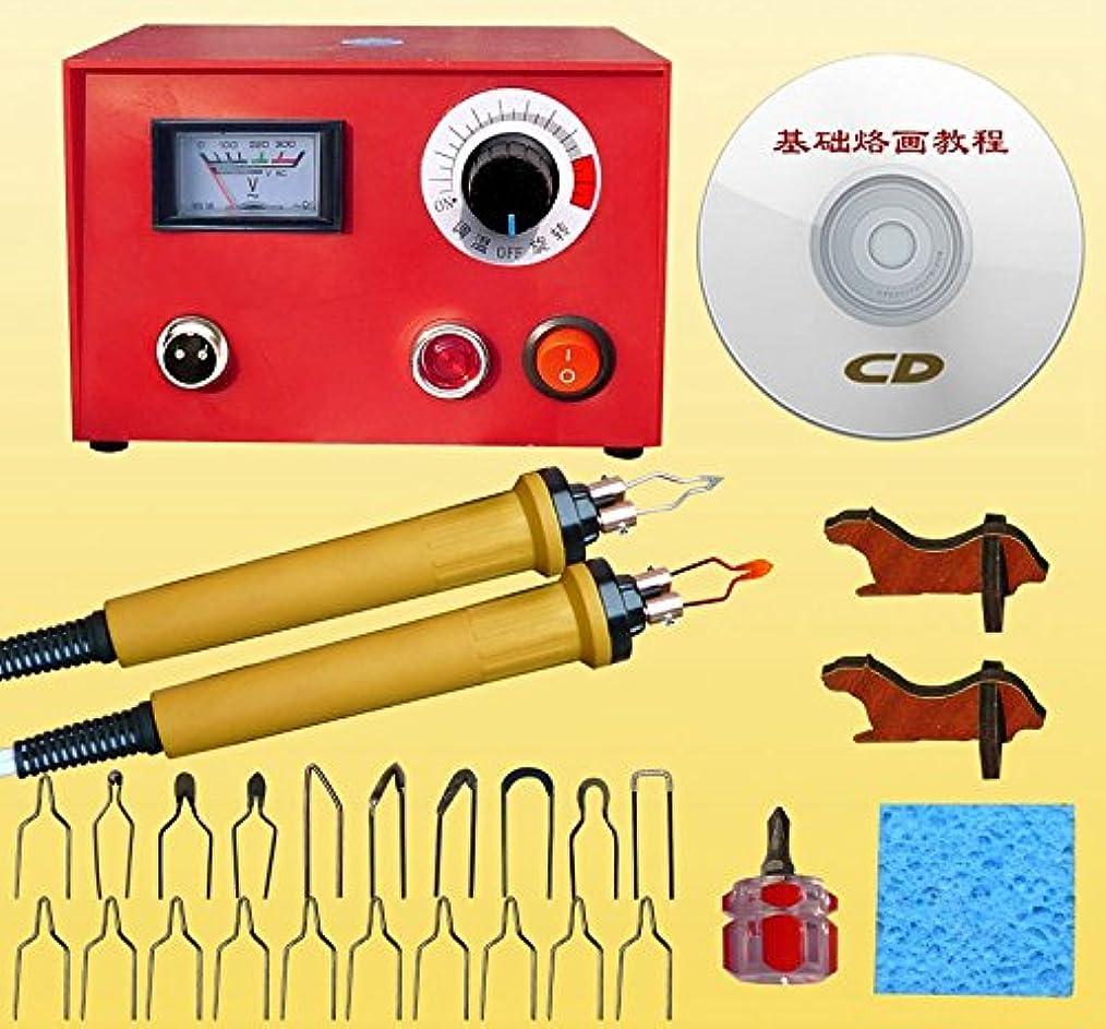 影響力のあるシール望ましいEleoption 電熱ペン マイペン ウッドバーニングセット 焼き絵セット 木彫りキット 彫刻 美術工芸品ツール DIY作業工具 温度調整