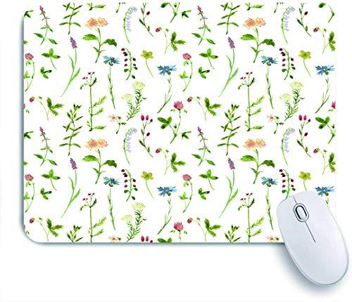COFEIYISI Mauspad,Office Mauspad(240 * 200mm),Frühlingssaison-themenorientierte Aquarelle, die Kräuter-Blumen-botanischer Garten-Kunstwerk malen,Rutschfeste Mousepad Matte für PC
