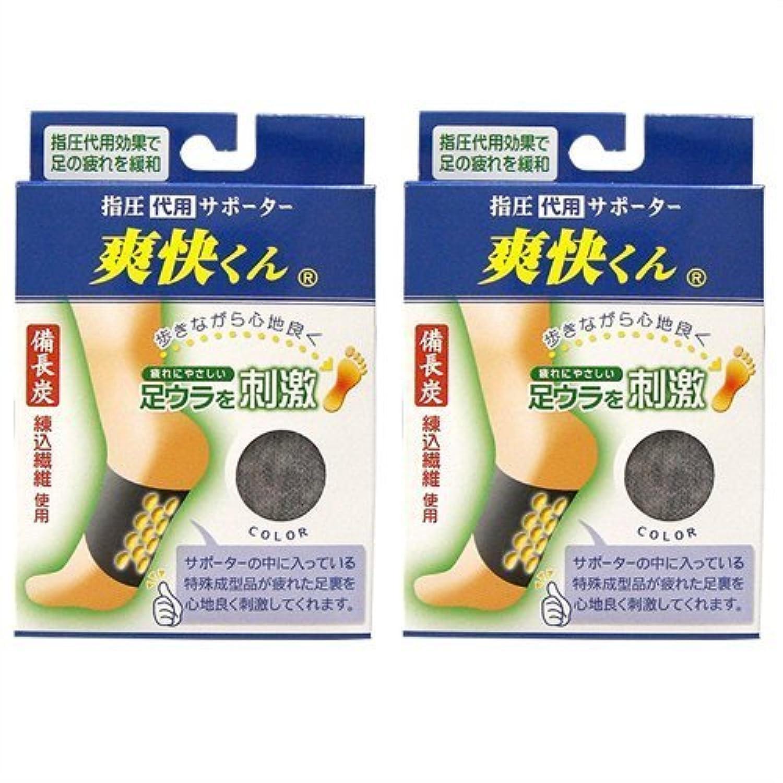 爽快くん(SV-220) ×2個セット