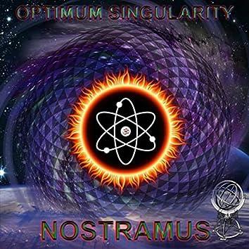 Optimum Singularity
