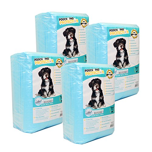 Pooch Pad Protection Best Dog Training Pads 100 Count, Premium Liquid Absorbent Dog Pads. Soft & Thick Pee Pads for Dog & CAT Ultimate Results Training, Blue, Large 23.5 x 23.5 inches (PP-PAD-100)