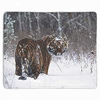 マウスパッド レーザー&光学式マウス対応 トラ動物ネコ大きな猫自然