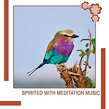 Spirited With Meditation Music