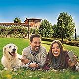smartbox - Cofanetto Regalo per Uomo o Donna - in Vacanza con Il Tuo Cane - Idee Regalo Originale - 1 o 2 Notti con Colazione e 1 attività per 2 Persone e Un Cane
