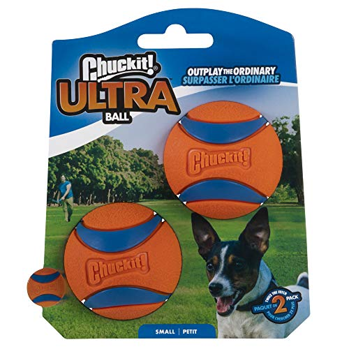 Canine Hardware -  Chuckit! Ultra Ball