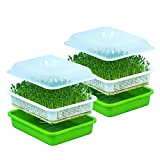 Seed Sprouter Tray with Lid BPA Free Bean Sprout Grower (2pcs Tray)