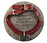 """Evergreen Garden Dog Collar Memorial Painted Polystone Stepping Stone - 12""""W x 1""""D x 12""""H"""