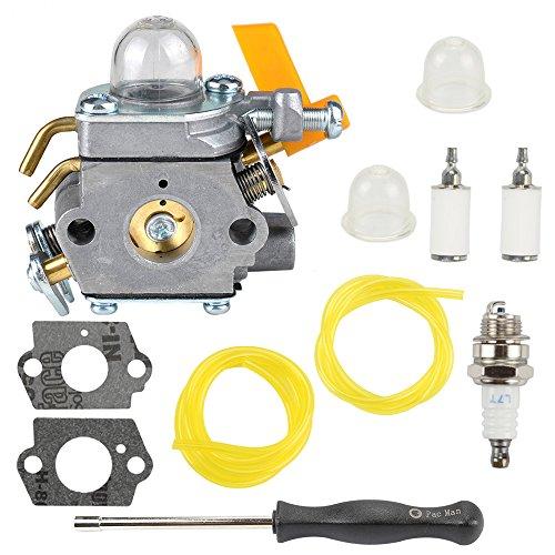 Buckbock 308054034 308054014 Carburetor with Tune Up Kit for Ryobi RY09053 RY09055 RY09056 RY08554 RY09907 RY28000 RY28005 RY28025 RY28065 Brushcutter Leaf Blower Vacuum