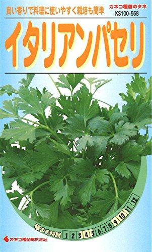 カネコ種苗 野菜タネ568 イタリアンパセリ 10袋セット