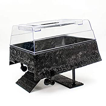 Best turtle topper Reviews