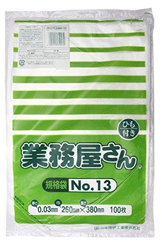 日本技研工業 日技規格袋ひもつきLDH-13100枚