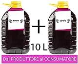 Confezione 2 PET da 5 L di VINO AGLIANICO Campania IGP IGT rosso CAMPANIA 13% Sfuso da Azi...