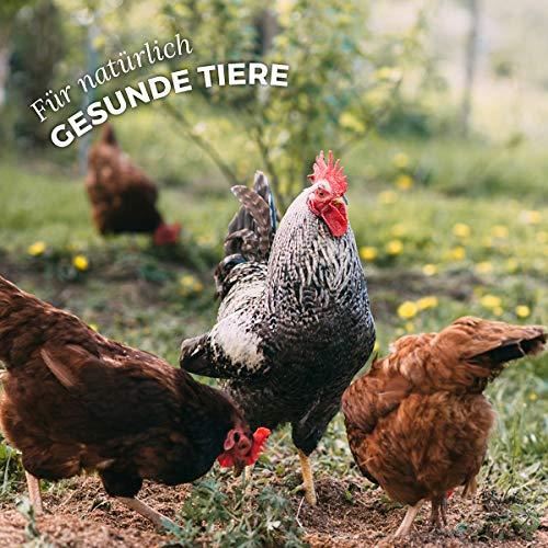 AniForte Hühnertraum Gesunde Belohnung 2,5 kg – Naturprodukt für Hühner - 6