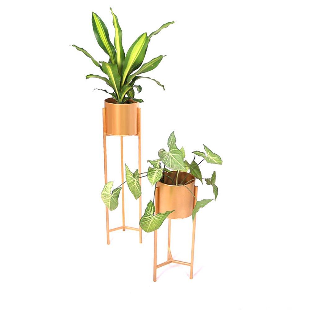 Flower Stand Pergola de Metal Dorado con Soporte para Flores, diseño Redondo de Jardiniere Triángulo, Maceta Creativa, Metal, 60+90cm: Amazon.es: Hogar