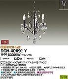 DCH-40691Y