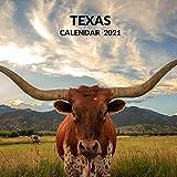 Texas Calendar 2021: January 2021 - December 2021 Square Photo Book Monthly Planner Calendar Present | Texas Lover Gift Idea For Men & Women