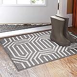 Indoor Doormat 20'x 32', Absorbent Front Back Door Mat Floor Mats, Rubber Backing Non Slip Door Mats Inside Mud Dirt...