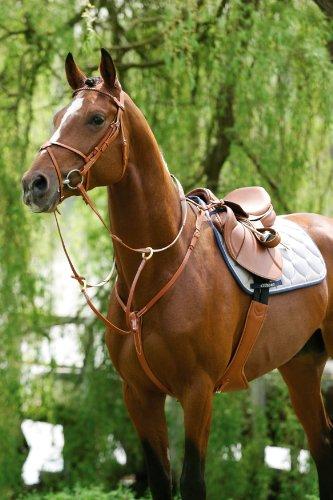 Stübben Vorderzeug mit separat verschnallbarer Martingalgabel - schwarz - Pony - Silber