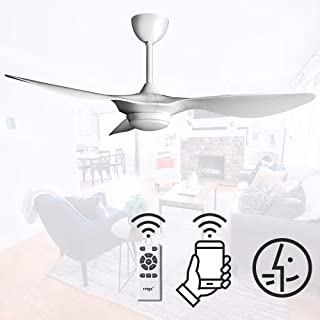 reiga 52-in Ceiling Fan with LED Light Kit Remote Control Modern Blades Noiseless Reversible Motor, Compatible with Alexa (Bright White-02)