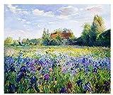 Pintura digital de bricolaje Hermoso campo de flores Niños adultos Pintura digital Set Decoración Regalos SDHJMT-20x24inch