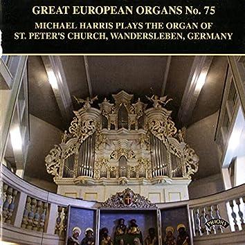 Great European Organs, Vol. 75: St. Peter's Church