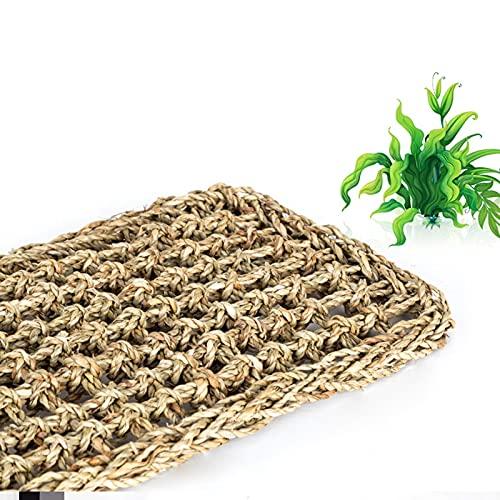 MRDUEWS Tuin hangmatten, reptielen terrarium, natuurlijke zeegras hagedis reptiel hangmat, reptiel klimmen tapijt sling, heremiet krabben gekkos bed matten huisdier reptielen mat hangmat