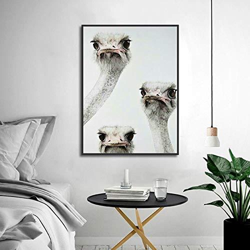 Hoofd struisvogel flyer afdrukken canvas schilderij nordic creatieve dier poster woonkamer nachtkastje wanddecoratie thuis kunst schilderen frameloze schilderij 50x75cm